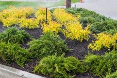 Irrigation sprinklers watering landscape Royalty Free Stock Images