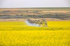 Irrigation sprinklers at work Royalty Free Stock Photo