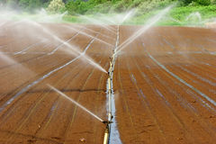 Irrigation system Royalty Free Stock Photos