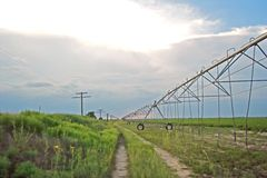 Irrigation system. Irrigation pipes in cotton field in west Texas near Lubbock Royalty Free Stock Photos