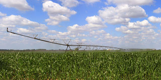 Irrigation system for agriculture Stock Photo