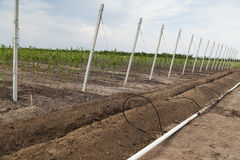 Irrigation system construction Stock Photos