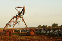 Irrigation system in a cotton field Stock Photo