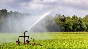 Irrigation system watering farm crops. Irrigation system on a large farm field watering crops stock images