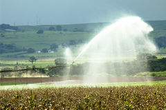 Irrigation system Stock Images
