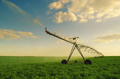 Irrigation system watering field of peas Royalty Free Stock Images