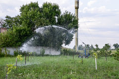 Irrigation system Watering in the garden. Watering the seedlings in the park. Watering the fields. Sprinkler. Royalty Free Stock Photo