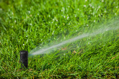 Irrigation system watering the lawn Stock Photo
