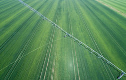 Irrigation system in wheat field Royalty Free Stock Photo
