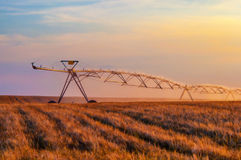Irrigation system on the wheat field Royalty Free Stock Photography