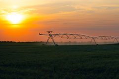 Irrigation system on the wheat field Royalty Free Stock Images