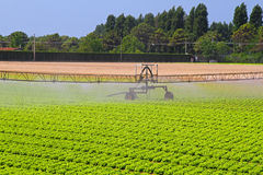 Irrigation systems Stock Photo