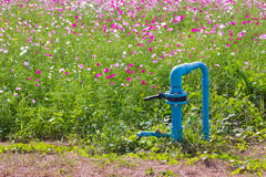 Irrigation systems, pipes faucets for watering and Field of flow Stock Image