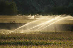 Irrigation systems on sunset Royalty Free Stock Image
