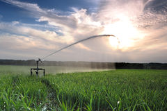 Irrigation three royalty free stock photography