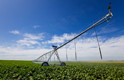 Irrigation tool