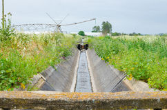 Irrigation water channel. Stock Photography