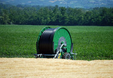 Irrigation on a wheat field Stock Image