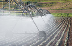 Irrigation Wheel Line. In field Royalty Free Stock Photos