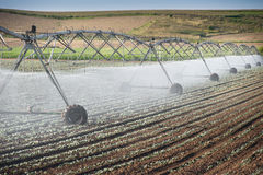 Irrigation Wheel Line. In field Royalty Free Stock Photography