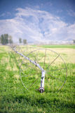 Irrigation Wheel line Royalty Free Stock Photo