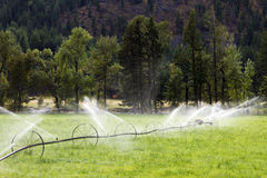 Irrigation Wheel Line Sprinkler Agricultural Equipment Stock Images