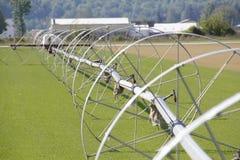 Irrigation Wheels in Washington Royalty Free Stock Photos