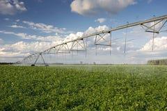 Irrigator над полем картошки, Midwest, США Стоковые Фото