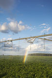Irrigator, potato field with a rainbow. MIdwest, USA royalty free stock images