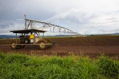 Irrigator sopraelevato Immagine Stock