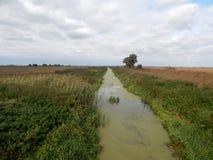 Irrigatory kanal arkivfoton
