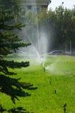 Irrigazione Fotografie Stock Libere da Diritti