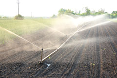 Irrigazione immagine stock