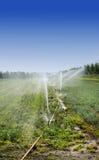 Irrigazione immagine stock libera da diritti