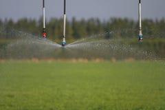 Irrigazione 4 fotografia stock
