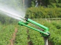 Irrigazione Immagini Stock