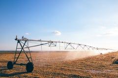 Irrigazione agricola sul campo di stoppie raccolto del grano Immagine Stock Libera da Diritti