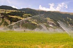 Irrigazione automatica dei campi del raccolto Fotografie Stock