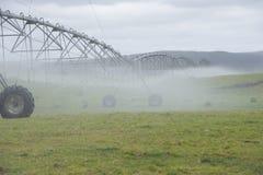 Irrigazione dallo spruzzatore del perno sul campo nebbioso Fotografia Stock