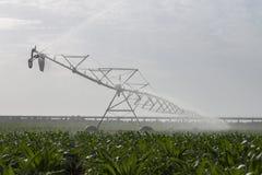 Irrigazione del campo di cereale Fotografia Stock Libera da Diritti