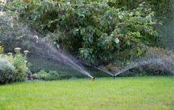 Irrigazione del giardino con il sistema antincendio Fotografia Stock