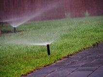 Irrigazione del giardino - primo piano dello spruzzatore Fotografia Stock
