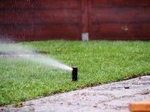 Irrigazione del giardino - primo piano dello spruzzatore Fotografia Stock Libera da Diritti