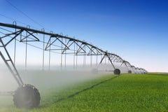 Irrigazione del raccolto Fotografie Stock Libere da Diritti