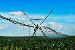 Irrigazione del raccolto Fotografia Stock