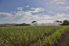 Irrigazione del Sugar Cane Crop In Australia immagini stock