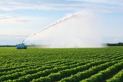 Irrigazione di terreno coltivabile Immagine Stock Libera da Diritti