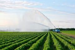 Irrigazione di terreno coltivabile Fotografie Stock Libere da Diritti