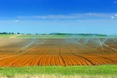 Irrigazione di terreno coltivabile Immagini Stock Libere da Diritti