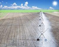 Irrigazione di un campo dell'azienda agricola Fotografie Stock
